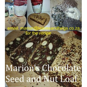 Marion's Chocolate seed and nut loaf